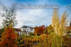 gite_automne
